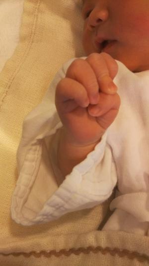 赤ちゃんの手に握られているもの