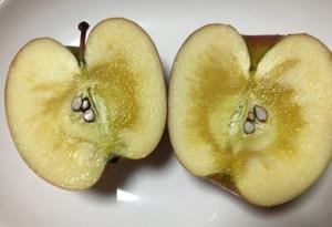 りんご収穫祭